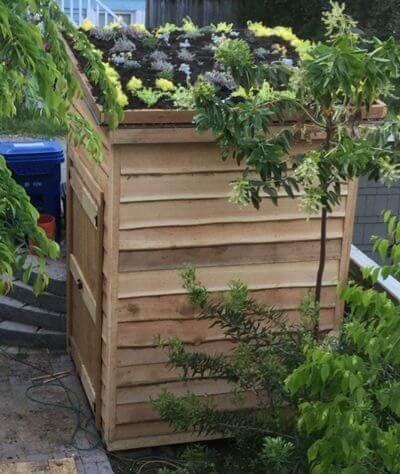 Live Garden Roof
