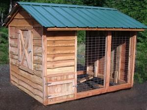 Chicken Coop Metal Roof Shed